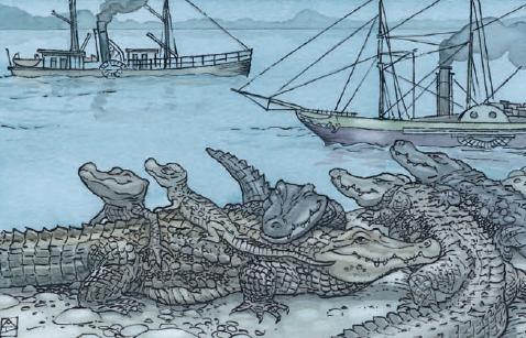 yacares y barcos conviviendo en la selva en uno de los cuentos de la selva