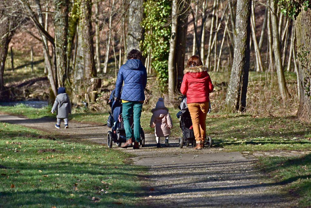 Paseo familiar en el parque - actividades en la naturaleza