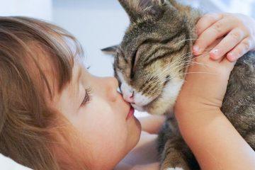 Niña besando a gato para Respeto a los animales