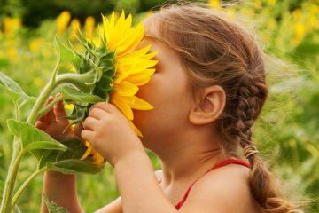 6 actividades para fomentar el cuidado del medio ambiente