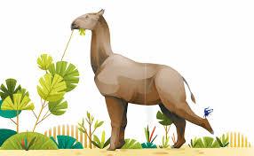 imagen de un Paraceratherium