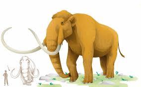 imagen de un mamut lanudo